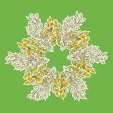Uma grinalda das folhas no verde ilustração stock