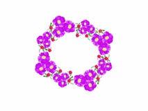 Uma grinalda de flores roxas em ocasiões especiais ou em um dia especial com um fundo branco ilustração stock