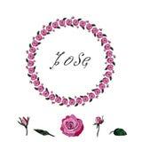 Uma grinalda de rosas vermelhas Grinalda à moda de rosas vermelhas em um fundo branco ilustração stock