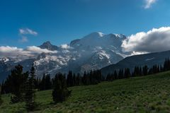 Uma ideia arrebatadora da parte traseira da montagem Rainier National Park, Washington, EUA foto de stock royalty free