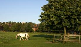 Uma ideia da terra comum ocidental, Lincoln, Lincolnshire, Reino Unido fotos de stock