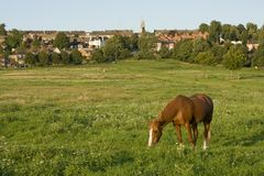 Uma ideia da terra comum ocidental, Lincoln, Lincolnshire, Reino Unido imagem de stock