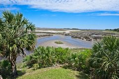 Uma ideia de ângulo larga de uma área pantanoso cercada por árvores em Wakulla salta Florida fotos de stock royalty free