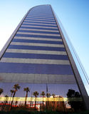 Uma ideia de reflexões da palma e do edifício Imagens de Stock