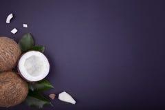 Uma ideia superior de uma composição de cocos frescos bonitos Dois cocos e um meio inteiros de um fruto tropical em um azul imagens de stock royalty free
