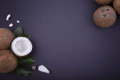 Uma ideia superior de uma composição de cocos frescos bonitos Quatro cocos e um meio inteiros de um fruto tropical em um azul foto de stock royalty free