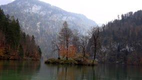 Uma ilha no meio de um lago coberto de vegetação com as árvores video estoque