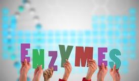 Uma imagem composta das mãos que sustentam enzimas imagens de stock