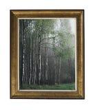Uma imagem de um bosque do vidoeiro em um quadro do vintage Quadro retangular de prata do vintage com um ornamento isolado no bra imagem de stock