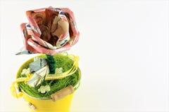 Uma imagem do conceito de uma flor do dinheiro com espaço da cópia fotos de stock royalty free