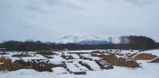 Uma jarda de serração de madeira sob um mountian nevado imagens de stock royalty free