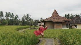 Uma jovem mulher alegre feliz corre a uma reunião, a mulher voada sorri, veste um vestido longo brilhante, guarda-o com ela vídeos de arquivo