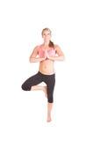 Uma jovem mulher bonita que faz o exercício da ioga Imagem de Stock