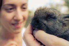 Uma jovem mulher e um coelho cinzento Imagem de Stock