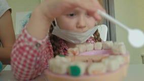 Uma jovem mulher e um molde da menina seus dentes do plasticine, introduzem seus dentes na maxila do brinquedo, a menina fazem video estoque