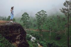 Uma jovem mulher em um chapéu está estando pelas plantações de chá fotografia de stock