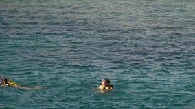Uma jovem mulher em um revestimento de vida põe sobre uma máscara e olha sob a água vídeos de arquivo