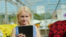 Uma jovem mulher escolhe flores decorar uma casa Olhares no catálogo de produto na tabuleta video estoque