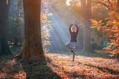 Uma jovem mulher faz a posição da ioga no nascer do sol na floresta do outono Fotos de Stock Royalty Free