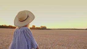 Uma jovem mulher no por do sol anda o campo de trigo tiro do steadicam filme