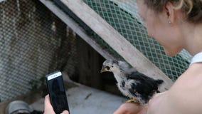 Uma jovem mulher toma um selfie no telefone com uma galinha em sua mão, o pintainho voa afastado video estoque