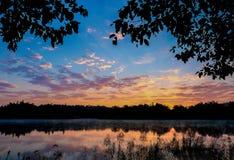 uma lagoa da floresta no nascer do sol imagens de stock