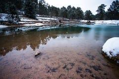 Uma lagoa gelada durante o inverno fotografia de stock royalty free