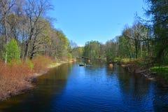 Uma lagoa na ilha de Elagin em St Petersburg, Rússia Imagem de Stock Royalty Free