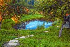 Uma lagoa pequena no local home e nas etapas Imagens de Stock