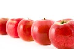 Uma linha de maçãs vermelhas fotografia de stock royalty free