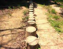 Uma linha um trajeto Foto de Stock Royalty Free