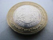 Uma lira Imagem de Stock Royalty Free