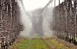Uma máquina do pulverizador polvilha inseticidas em um pomar de maçã nos primeiros dias da primavera Vista traseira imagens de stock