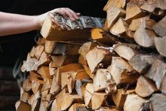 Uma m?o do ` s do homem toma a um vidoeiro o log lascado seco de um woodpile imagens de stock royalty free