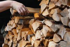 Uma m?o do ` s do homem toma a um vidoeiro o log lascado seco de um woodpile fotos de stock