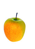Uma maçã Fotos de Stock
