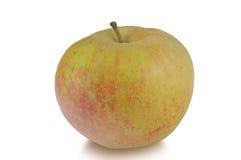 Uma maçã Reinette isolado no fundo branco Foto de Stock Royalty Free