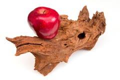 Uma maçã um o dia… Imagem de Stock