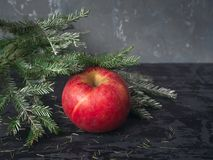 Uma maçã vermelha grande encontra-se em um fundo escuro sob um ramo prata-coberto do abeto vermelho fotos de stock