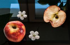 Uma maçã vermelha, uma metade de uma maçã e duas flores da maçã colocadas em um preto, comutado fora da tela de uma tabuleta Foto de Stock