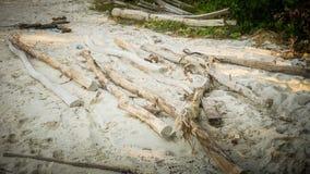 Uma madeira e uma vara inoperantes podres na praia branca da areia resistida na ilha do jawa do karimun fotografia de stock royalty free