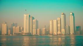 Uma manhã enevoada sobre a baía A baixa de uma cidade grande nos pássaros de mar da costa de mar voa sobre o horizonte vídeos de arquivo
