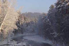 Uma manhã fria do inverno Fotos de Stock