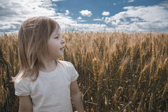 Uma menina agradável em um dia ensolarado do verão está em um campo de trigo Imagens de Stock