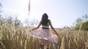 Uma menina bonita anda em um campo em uma saia video estoque