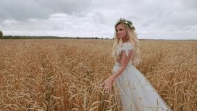 Uma menina bonita anda o campo e conduz sua mão ao longo das orelhas de milho vídeos de arquivo