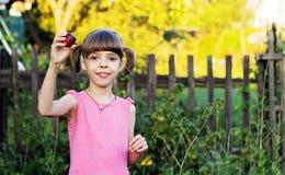 Uma menina bonita está guardando uma ameixa em sua mão Imagens de Stock Royalty Free