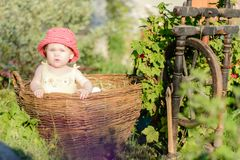 Uma menina bonito senta-se em um feno em uma cesta no jardim foto de stock royalty free