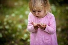 Uma menina com cabelo louro em um vestido luz-colorido no campo que funde em sementes e em lugar do dente-de-leão sob o texto foto de stock