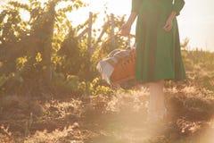 Uma menina com uma cesta anda através da floresta fotos de stock